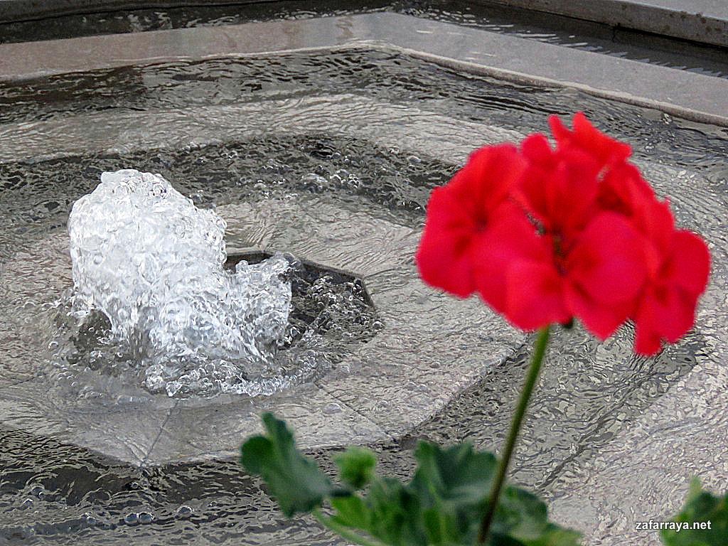 Inauguracion de la restauración del Pilar viejo de Zafarraya